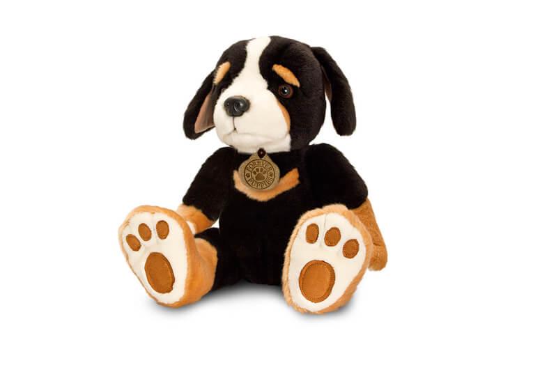 Black-Puppy