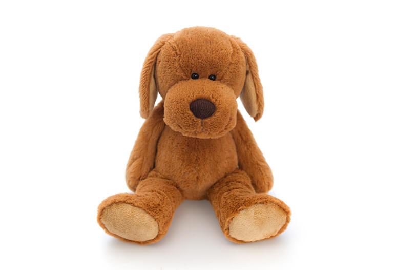 Flopsy-Dustie-Dog