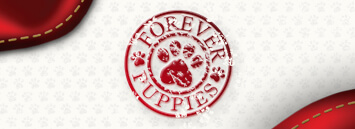Forever-Puppies